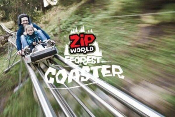 Zip world fforesrt